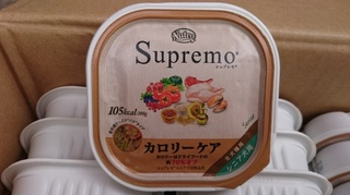 チョコ 001.JPG